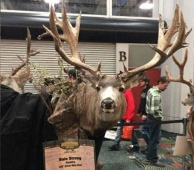 12 of the Biggest Poached Deer Ever Stolen from Law