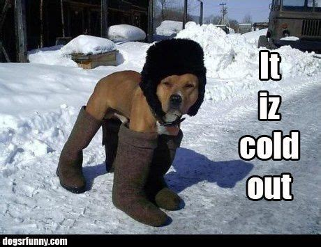 191 best Winter Day Humor images on Pinterest | Funny
