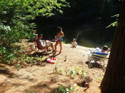 These Riverside Campsites In New Hampshire Will Make Your
