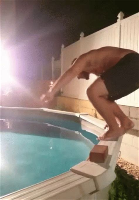 Diving Into A Pool GIFs   Tenor