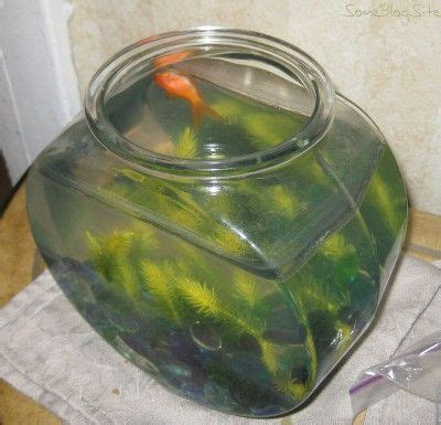 picture of a dead goldfish floating in a fishbowl
