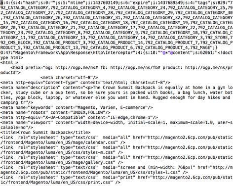 Full Page Cache in Magento 2