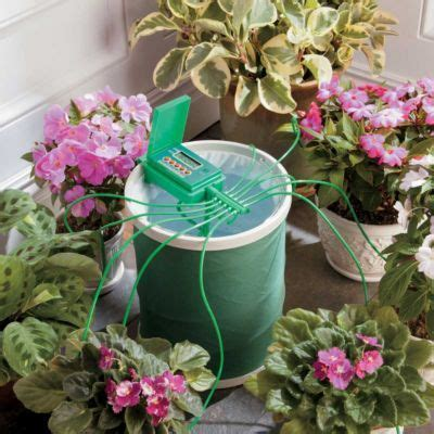 Automatic Plant Watering System with Coil Basket | Plant