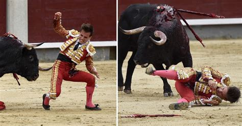 Bullfighter Left In 'Serious Condition' After Being Gored